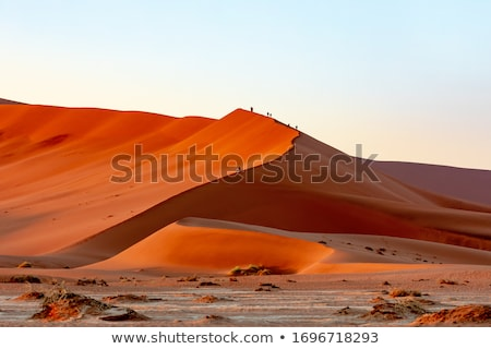 peoples on dune in Hidden Vlei, Namibia, Africa Stock photo © artush