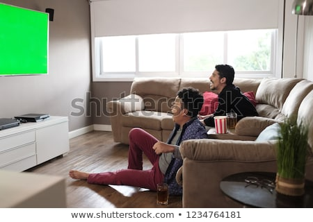 Happy Gay Couple Watching Sports Game On TV At Home Stock photo © diego_cervo