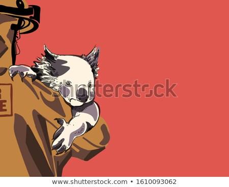漫画 笑みを浮かべて ライフガード クマ ストックフォト © cthoman