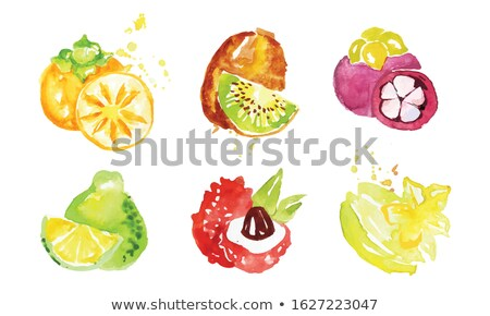 Mangosteen and Pomelo Posters Vector Illustration Stock photo © robuart