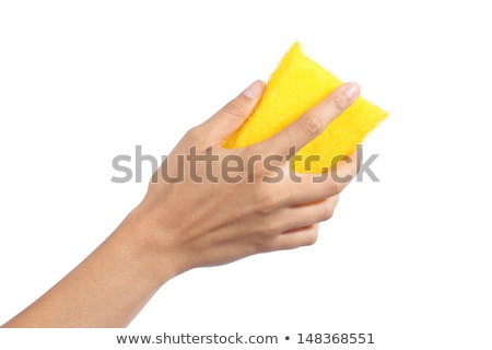 woman hand holding a cleaning sponge isolated on white stock photo © manaemedia