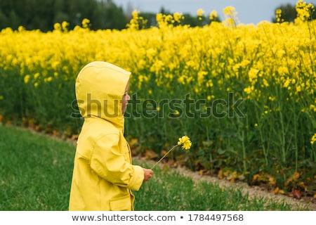 Amarelo roupa conjunto menina veículos barcos Foto stock © toyotoyo