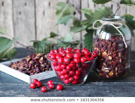 Hawthorn on wood Stock photo © AGfoto