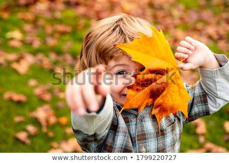 family throw autumnal leaves Stock photo © Lopolo