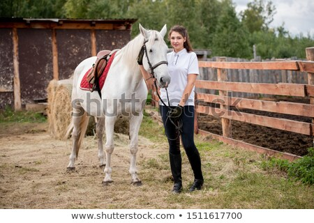 Young active woman chilling out with white purebred racehorse Stock photo © pressmaster