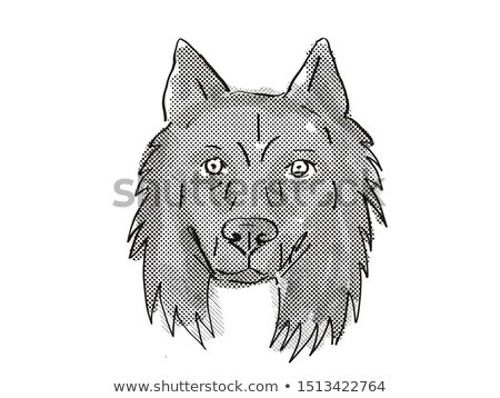 Stockfoto: Belgian Sheepdog Dog Breed Cartoon Retro Drawing