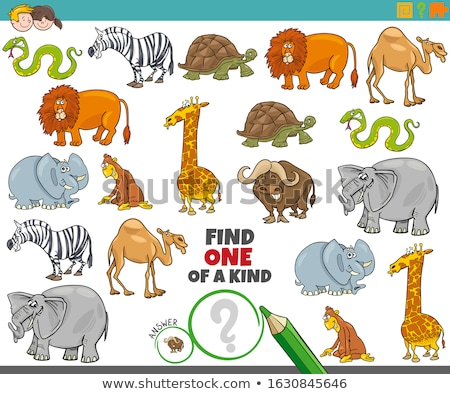 one of a kind task with wild animal characters Stock photo © izakowski