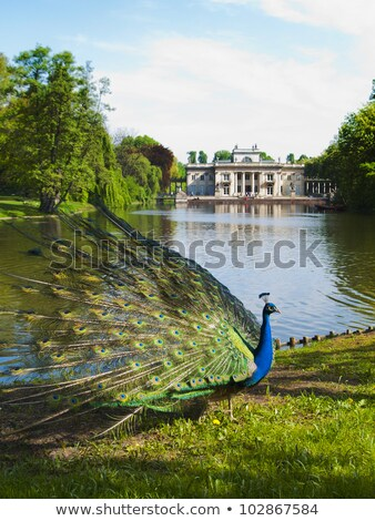 Paleis water Warschau koninklijk park Polen Stockfoto © rognar