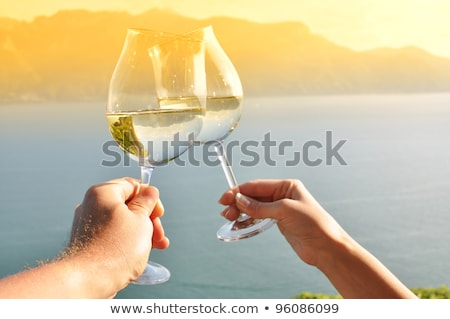 a couple of wine producers toasting Stock photo © photography33