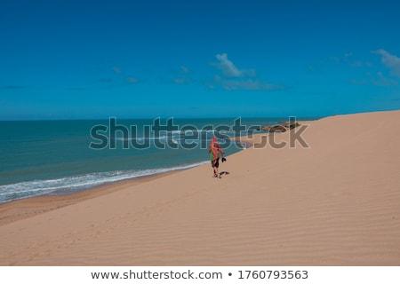 песчаная дюна мнение Top облака пейзаж морем Сток-фото © jkraft5
