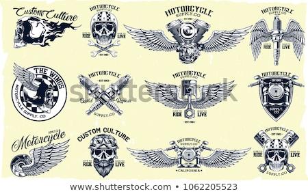 chopper motorcycle vector set stock photo © krabata