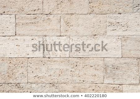 bezszwowy · tekstury · piaskowiec · powierzchnia · ściany · streszczenie - zdjęcia stock © tashatuvango