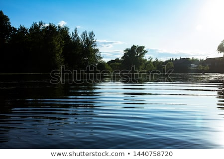 Rural scene with pond Stock photo © zzve