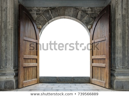 Old massive door Stock photo © elxeneize