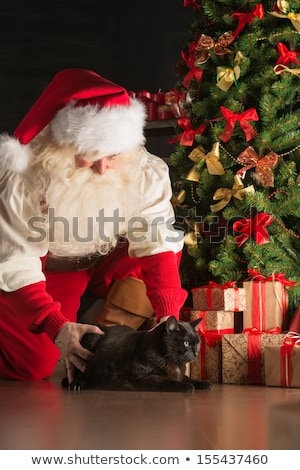 Santa meeting big black cat at home where he bring gifts to Stock photo © HASLOO