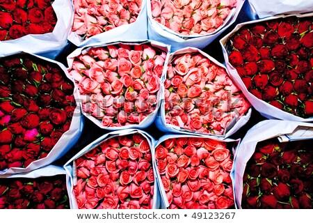Vers chili bloem markt knal bloemen Stockfoto © meinzahn