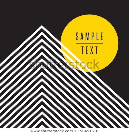 Vector black and white mosaic infographic template Stock photo © orson