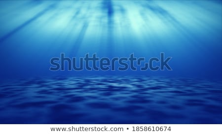 real ray of light from underwater stock photo © aetb