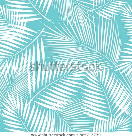 Pálmafák dekoratív fekete citromsárga tengerpart égbolt Stock fotó © kjolak
