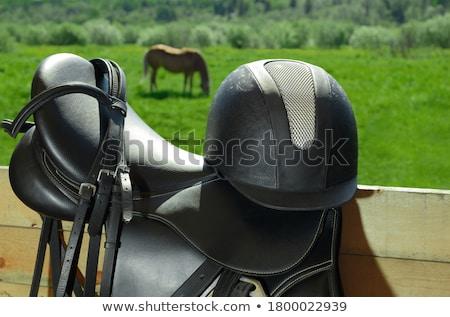black Equestrian helmet Stock photo © cynoclub