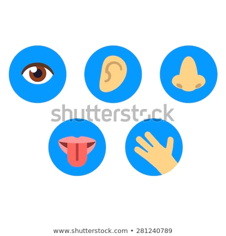 Buttons with sense organs Stock photo © bluering
