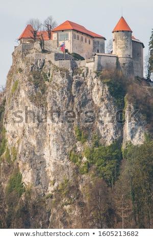 old medieval castle above bled lake in slovenia stock photo © stevanovicigor