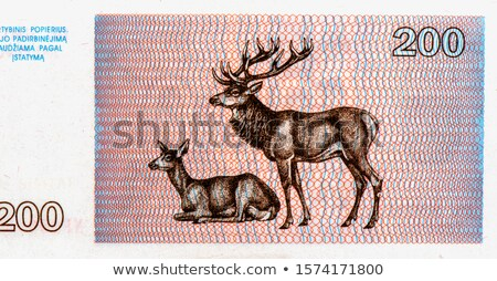Old Lithuanian banknotes, money Stock photo © Peteer