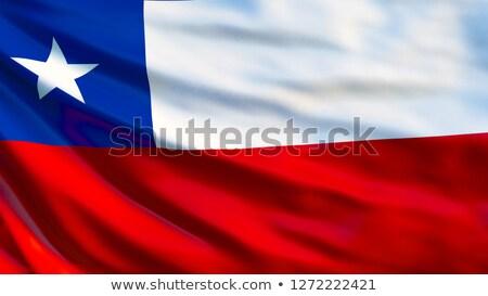 Chile bandeira vetor imagem projeto Foto stock © Amplion