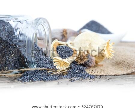 haşhaş · kafa · tohumları · yalıtılmış · beyaz · çiçek - stok fotoğraf © digifoodstock