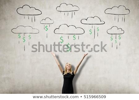 Blonde vrouw dollarteken hand business pak corporate Stockfoto © studioworkstock