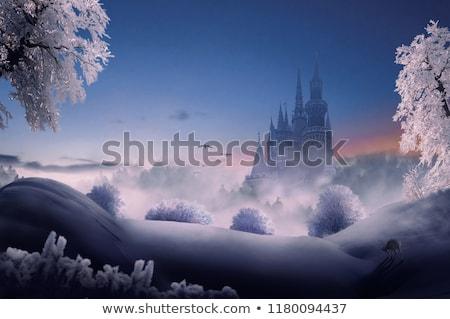 Kasteel winter bos cartoon roze landschap Stockfoto © liolle