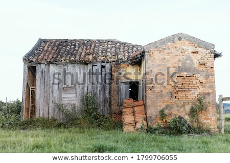 Ruined house in the field Stock photo © colematt
