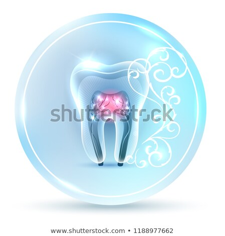 Hermosa limpio artístico diente anatomía icono Foto stock © Tefi