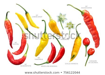 Pimentas pimenta maduro comida frutas Foto stock © maxsol7