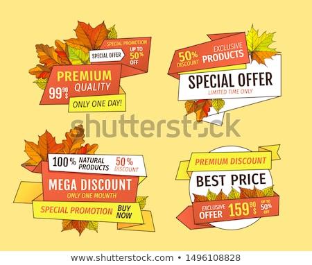 Promo Autumn or Fall Discounts Half Price Adverts Stock photo © robuart