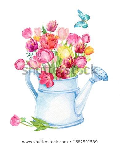 Watering Can Poster Background Illustration Stock photo © lenm