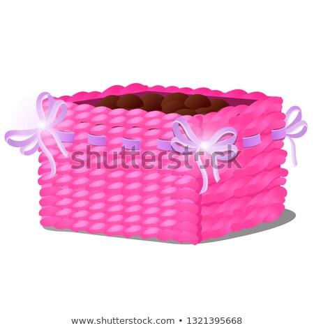 Elegancki doniczka formularza wiklina koszyka gleby Zdjęcia stock © Lady-Luck