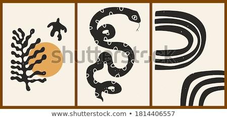 serpente · quadro · olho · natureza · verde · vida - foto stock © bluering