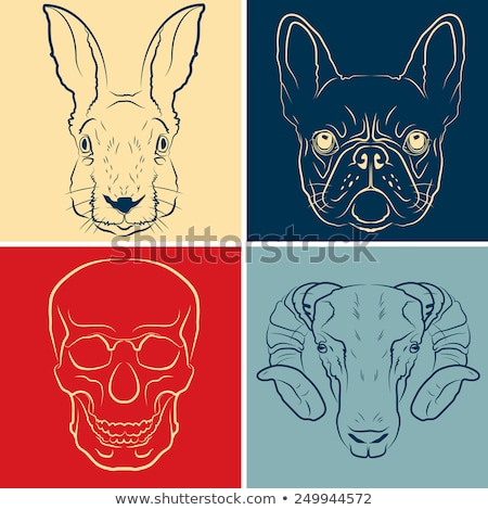 Sketch, french skull Stock photo © netkov1