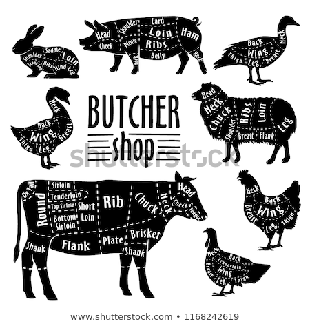Duck meat. Poster for Butchery meat shop Stock photo © FoxysGraphic