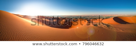 Liwa desert in Abu Dhabi Stock photo © Anna_Om