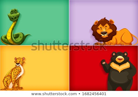 Background template with plain color and many animals Stock photo © bluering