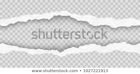 Vector ripped paper - abstract background Stock photo © orson