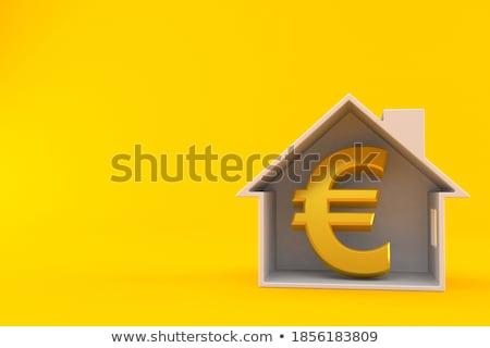дома · евро · изолированный · белый · бизнеса · строительство - Сток-фото © stokato