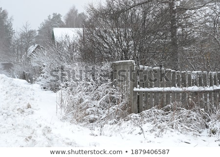 Snowbound fence. Stock photo © Leonardi