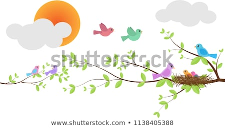 Crepuscolo albero rami nudo cielo Foto d'archivio © pancaketom