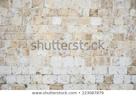 Dubrovnik kő falak óváros középkori erőd Stock fotó © searagen