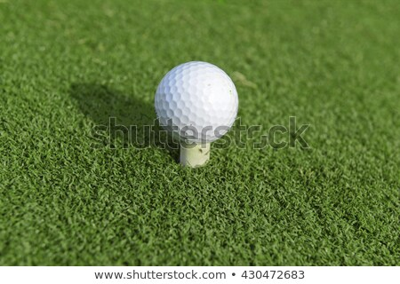 Golf ball with rubber tee Stock photo © michaklootwijk