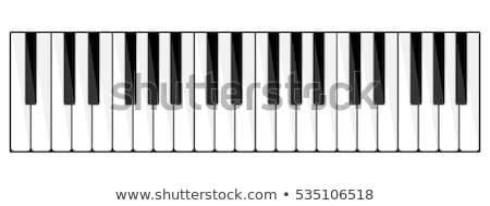 piano · tastiera · display · nero · bianco - foto d'archivio © oscarcwilliams