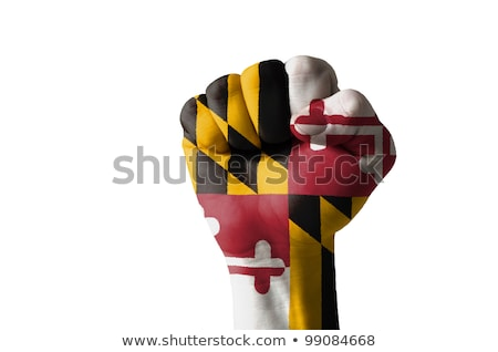 Fist Painted In Colors Of Us State Of Maryland Flag Foto stock © vepar5